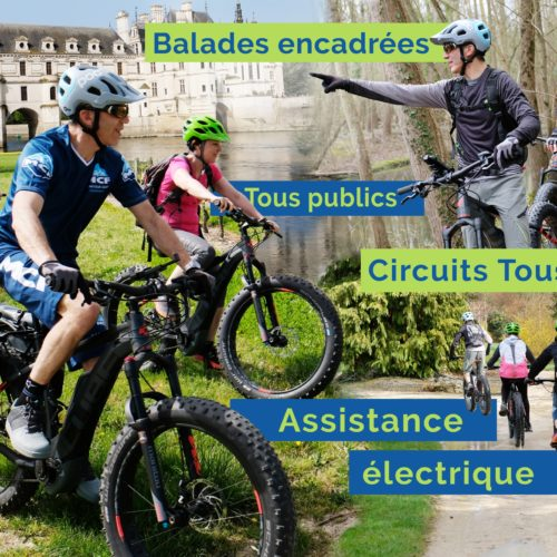 easy-fat-bike-electrique-actividees